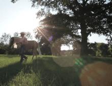 Siemen's Gainesville Documentary