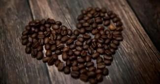 tn cafe02