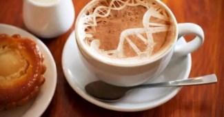 Los genes y el café