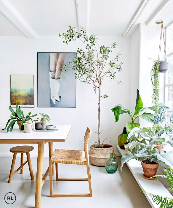 living room plant decor foot rests for 53 inspirational ideas the luxpad mette jakobsen