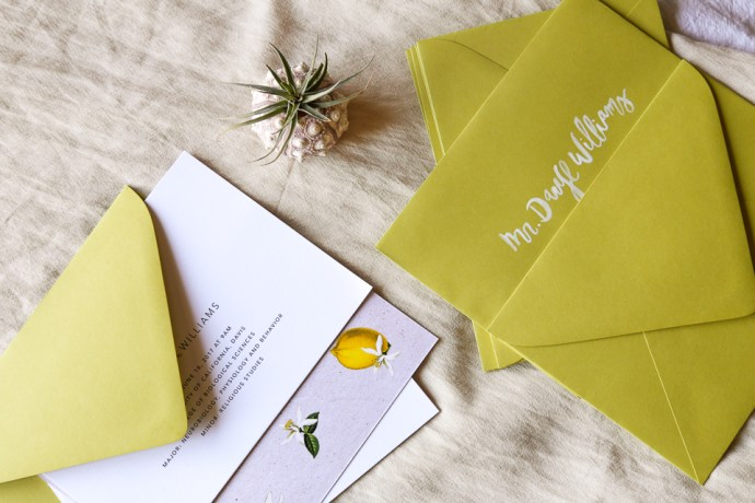 Custom Invitation Design and Modern Calligraphy Addresses for Llamas & Lemons Suite by Amarie Design Co.