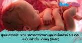 พัฒนาการทารกในครรภ์