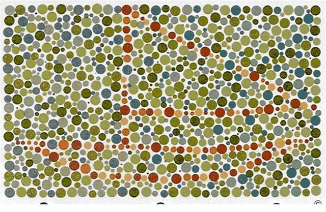วิธีสังเกตลูกตาบอดสี