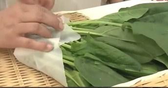 วิธีเก็บผักในตู้เย็น