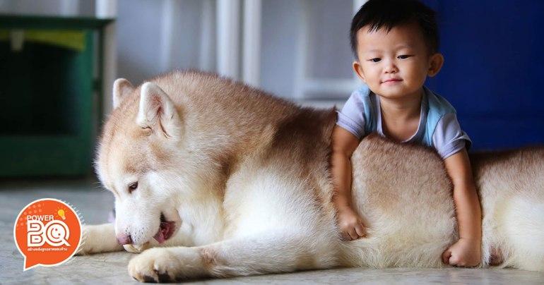 เลี้ยงลูกกับสุนัขด้วยกัน