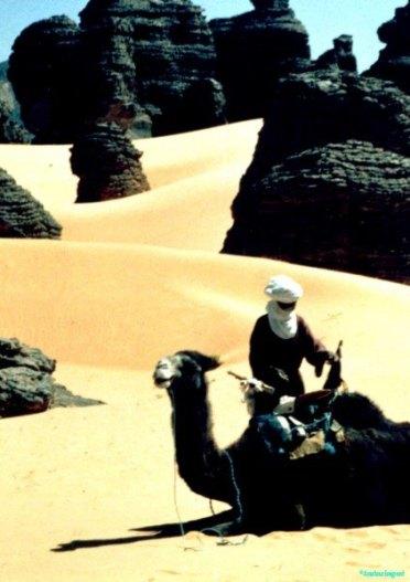Bedu central sahara