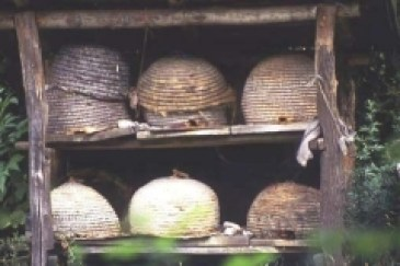Beehives made from woven grass into an easily portable hemispheree