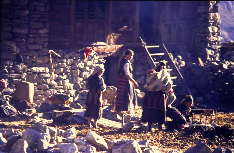 Three generations weaving yak wool on looms mounted in the yard