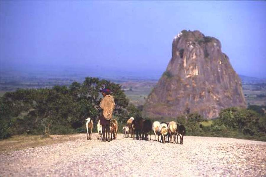 The Chinese road, central Ethiopia