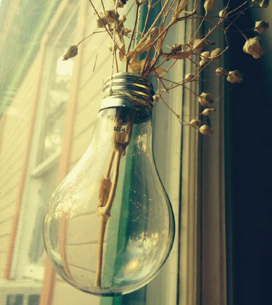 Start saving those old light bulbs and get your craft on! Try turning those energy-suckers into a beautiful way to enjoy the beauty of nature right in your own home.