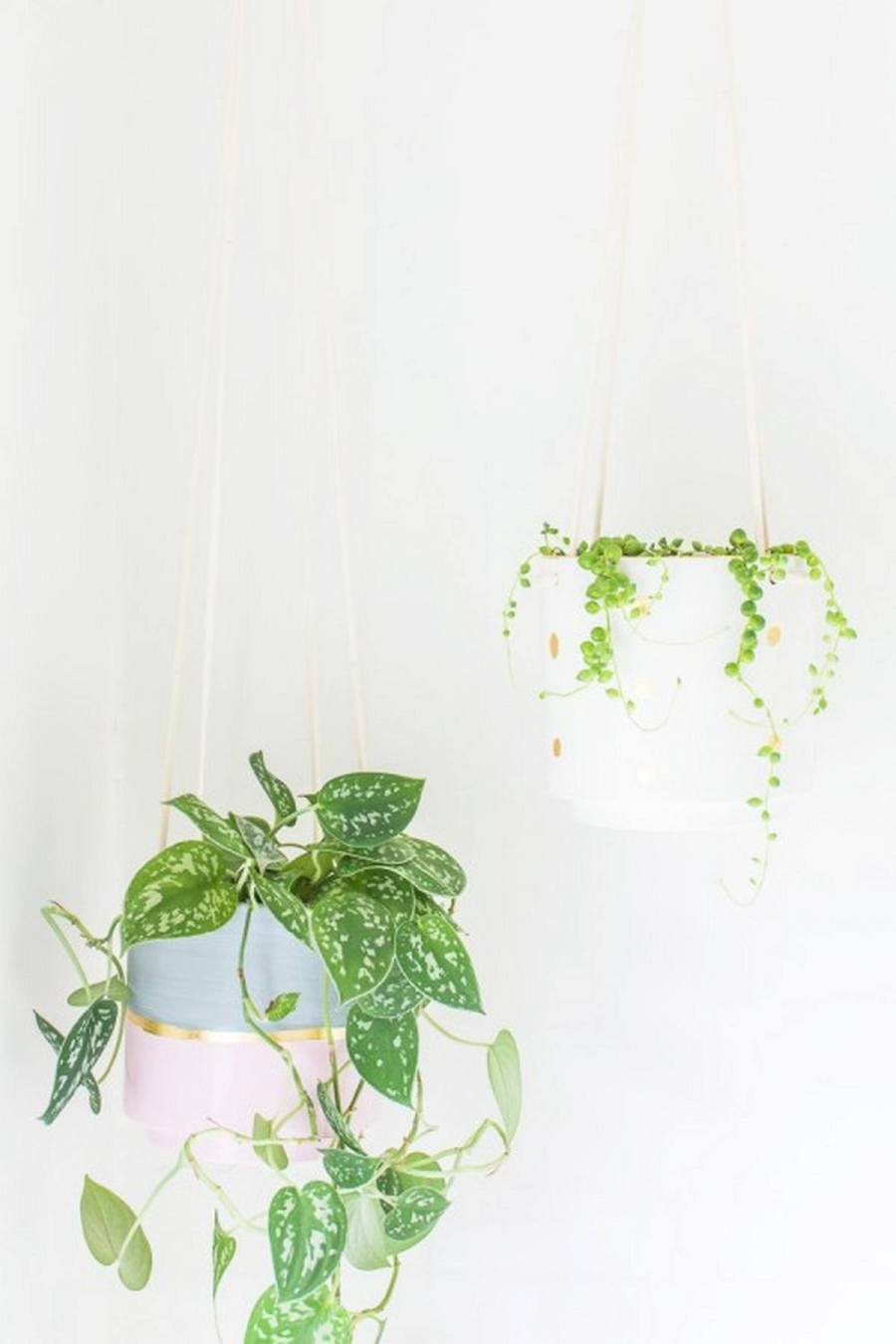 Plants can liven up a home like nobody's business, and hanging plants take that liveliness to a whole new level, literally.