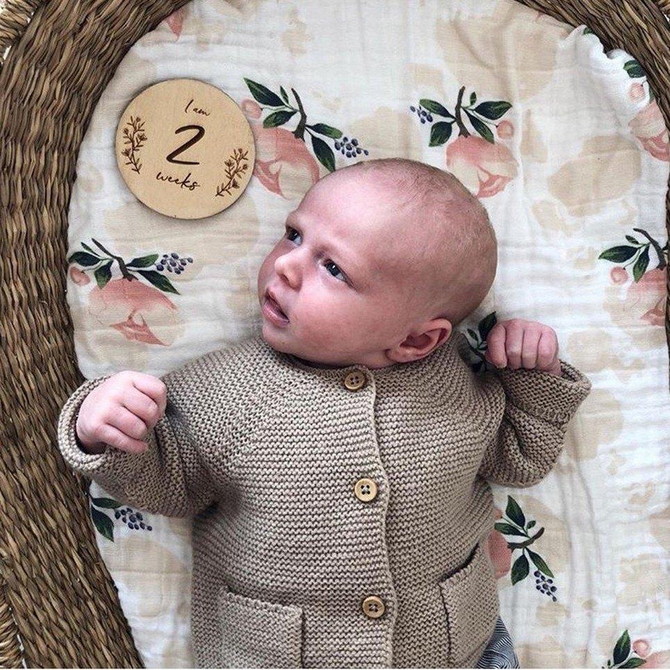 Baby Milestone Wooden Plaque