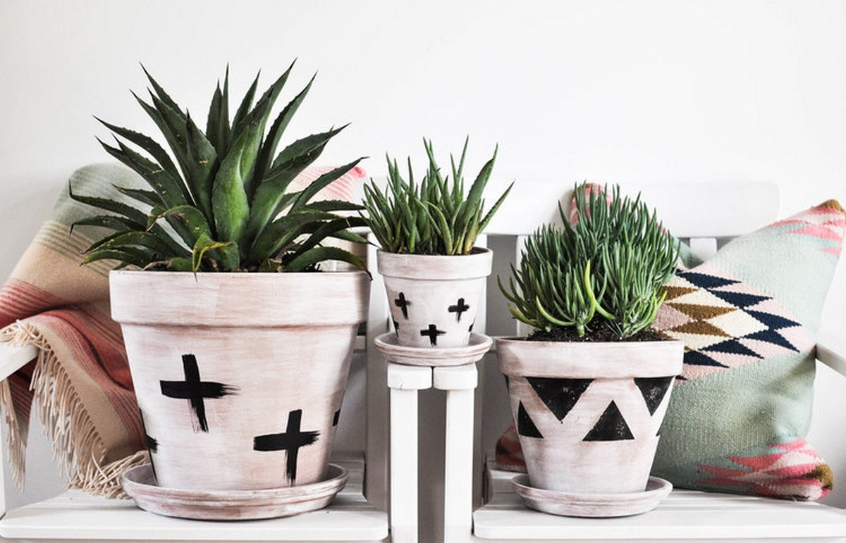 Warmer months coming our way are making us think about all of the plants we'll be planting this spring and summer!