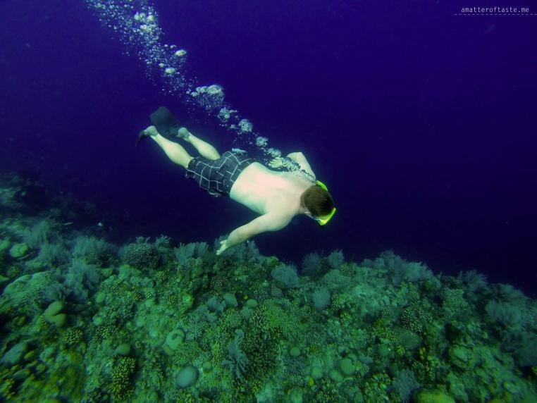 7-bunaken-snorkeling-1