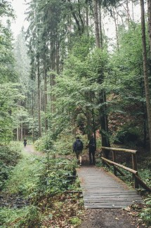 Bohemian Switzerland Northern Hikes guide day trip from Prague