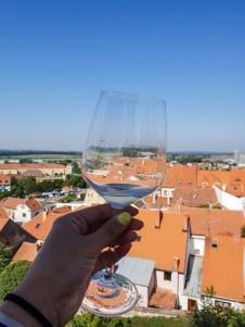 Mikulov wine sightseeing glass view