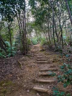 Narabigaoka hill Kyoto hike