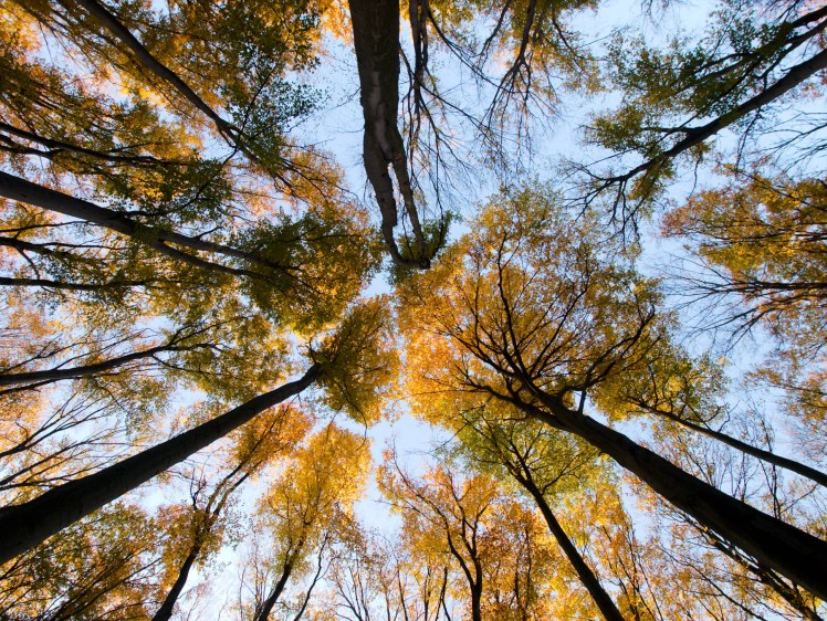 Travelling Poland weather autumn