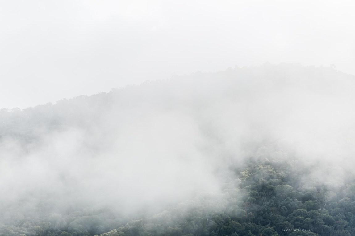 bright-foggy-mountain