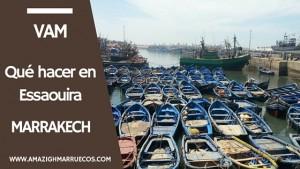 Excursión desde Marrakech a Essaouira (2)