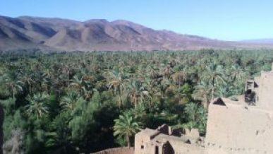 ksar-tamnougalt-viaje-al-corazon-del-draa-1