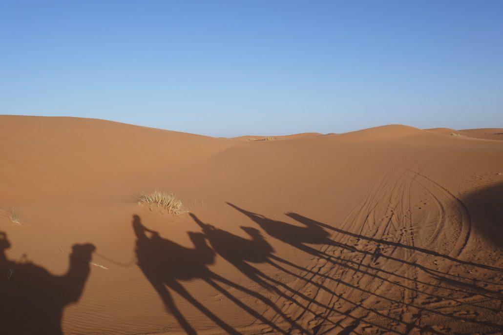 guia-para-viajar-al-desierto-de-marruecos-viajes-amazigh-012