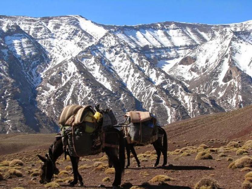 trekking-toubkal-1234
