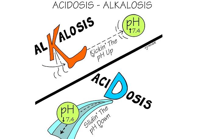 Alkalosis - Acidosis