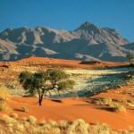 Apa itu Kalahari? Fakta, Sejarah & Informasi Lainnya
