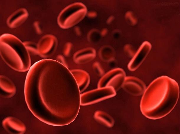 Sel Darah Merah