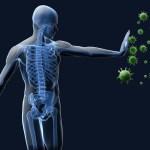 16 Fakta & Cara Kerja Sistem Kekebalan Tubuh Manusia
