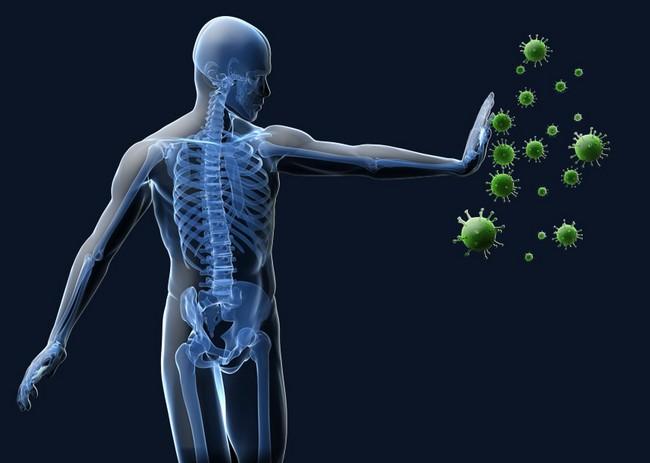 Hasil gambar untuk sistem kekebalan tubuh manusia