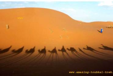 4-day sahara desert tour marrakech