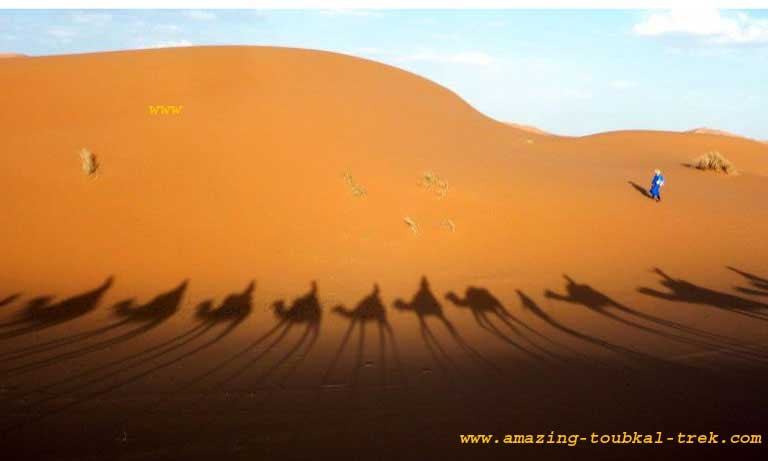 4-day sahara desert tour marrakech