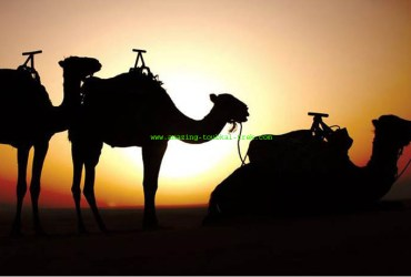 4-day fes desert tour