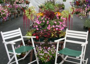 AFF brochure display with chairs - Copy