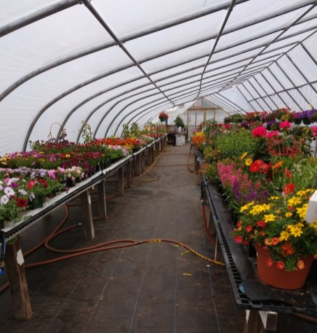 Our retail greenhouse