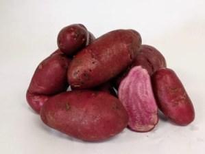 AmaRosa Fingerling Potato