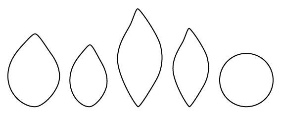 Template for poinsettia petals