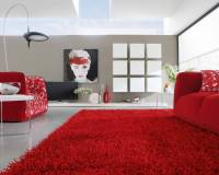 Contemporary rugs for your living room