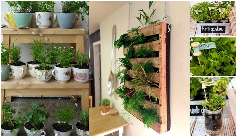 indoor kitchen garden white table set 10 cool diy ideas to grow an herb a
