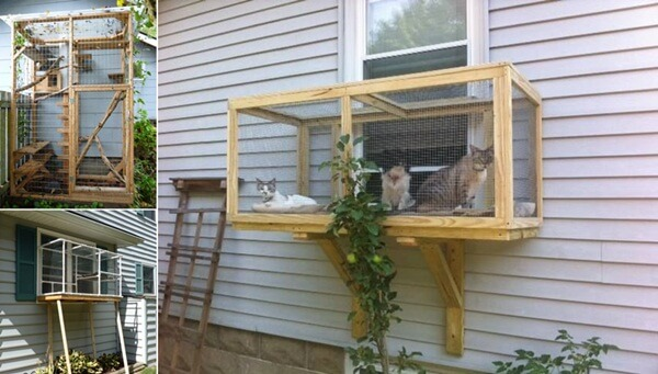 Build a Catio for Your Cats to Enjoy