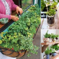 Kitchen Recycle Bin Spices 12 Cool Small Herb Gardens That Won't Take Much Space