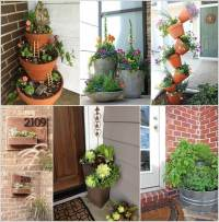 Decorative Plants for Front Door