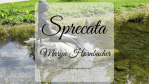 Sprecata, di Marya Hornbacher