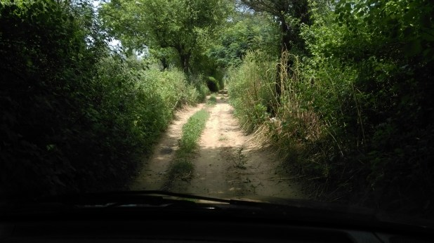 Amazing Road in Country Side