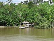 Expeditionen, »Rio Arapiuns« – Nebenfluss des Amazonas, Bild 2