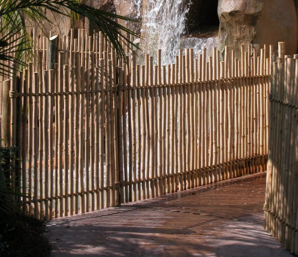 Rustic Bamboo Fencing Amazulu