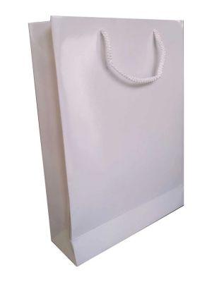 Baskısız karton çanta