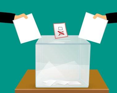 wyniki wyborów 2019